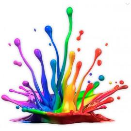 Colorants & Pigments